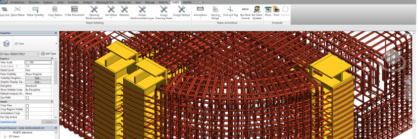 CADS RC3D for Revit